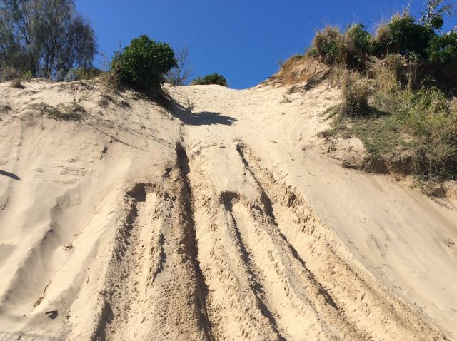 Image showing drivers attempt to scale steep dunes at Byfield, and cause damage.